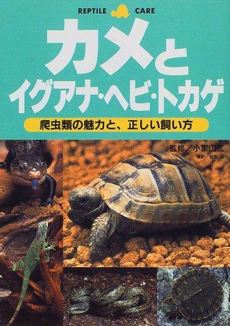カメとイグアナ・ヘビ・トカゲ―爬虫類の魅力と、正しい飼い方