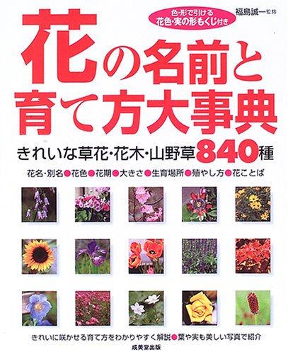 花の名前と育て方大事典の詳細を見る