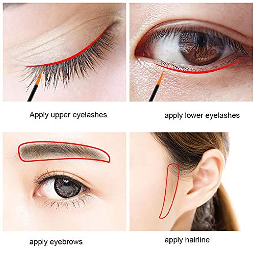 ヤング充実発見する眉毛まつげ速い急速な成長の液体エンハンサー栄養液栄養