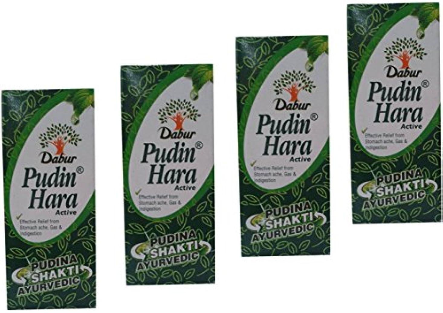 震え大陸服を片付けるPudin Haraアクティブ、30 ml – ペットボトル( Pack of 4 )