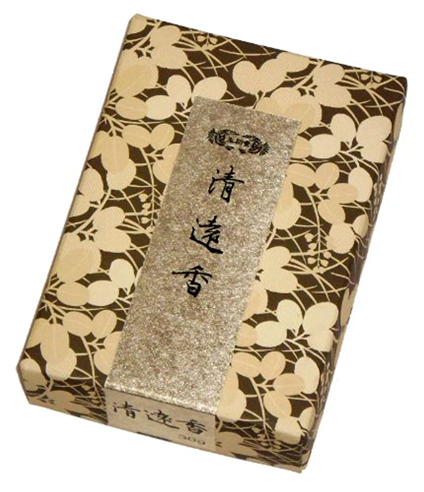 禁止スケジュール物理的な玉初堂のお香 清遠香 30g #605