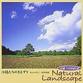 α波 1/fのゆらぎ Natural Landscape ~小鳥たちのさえずり~木立の中で/清里高原