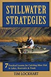 Stillwater Strategies: 7 Practical Lessons for Catching More Fish in Lakes, Reservoirs, and Ponds 画像