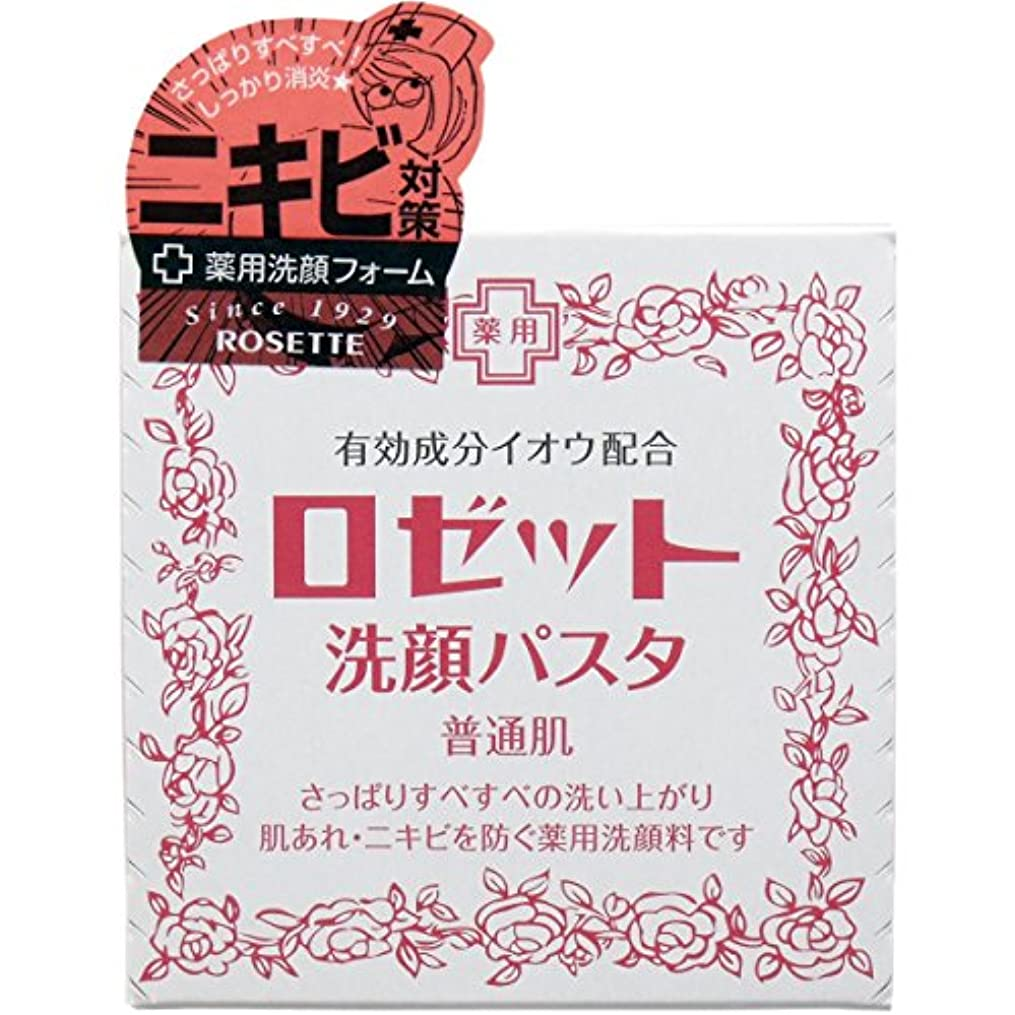 【まとめ買い】ロゼット 洗顔パスタ 普通90g ×2セット