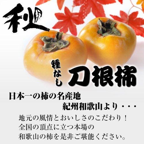 秋の味覚 紀州 和歌山 刀根柿 1ケース 約7.5kg入り (32玉)