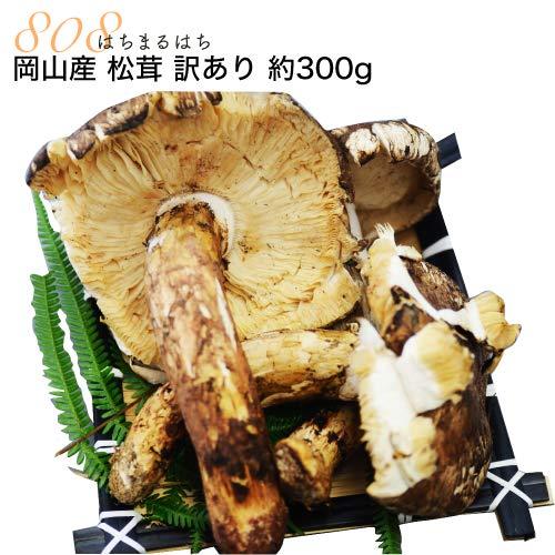 【訳あり】国産 松茸 300g前後 マツタケ まつたけ 岡山