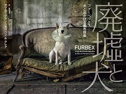 廃墟と犬 ファーベックス──犬と出かける都市探索