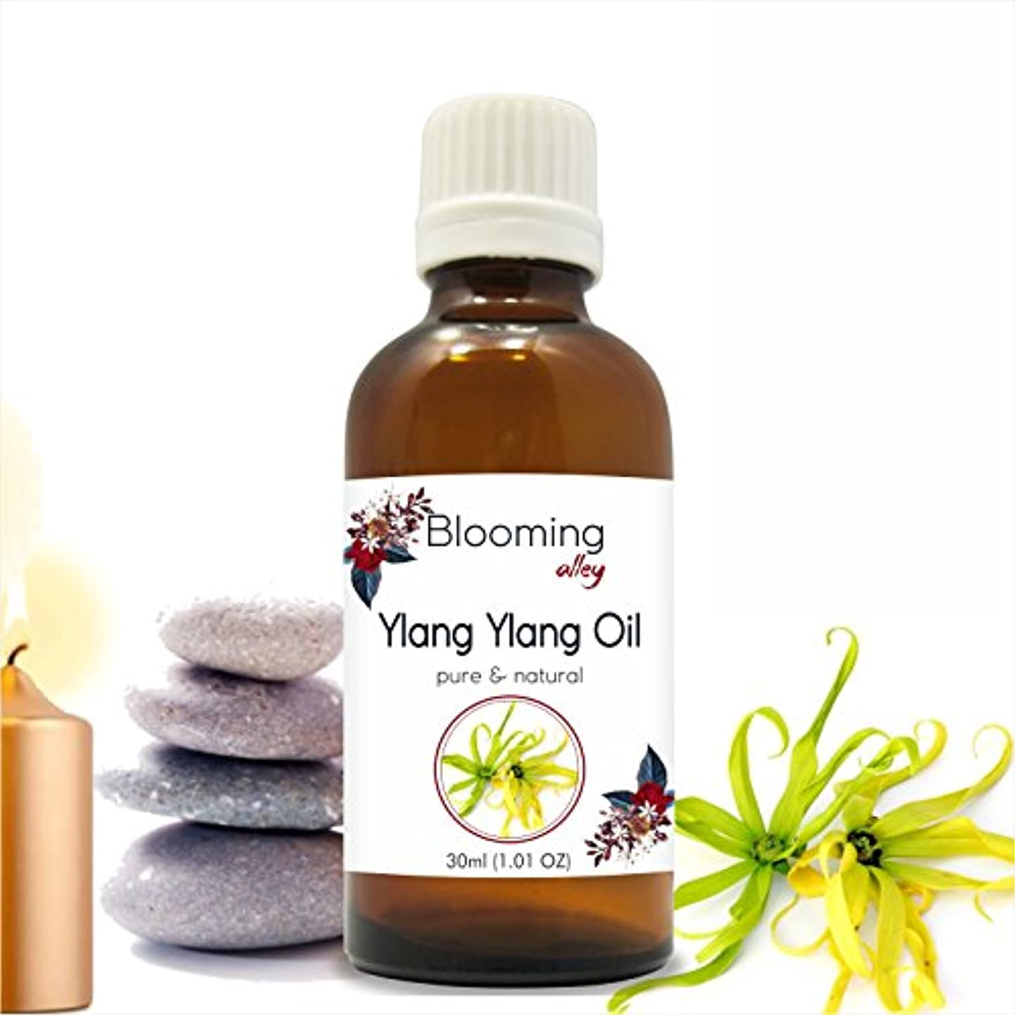 憤る注入ジェーンオースティンYlang Ylang Oil (Cananga Odorata) Essential Oil 30 ml or 1.0 Fl Oz by Blooming Alley