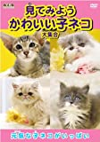 見てみよう かわいい子ネコ 大集合 AYK-103 [DVD]