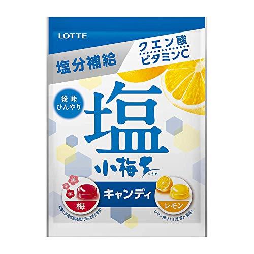 ロッテ 塩小梅(袋) 梅&レモン 84g×2袋
