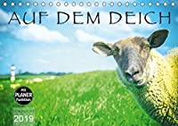 AUF DEM DEICH (Tischkalender 2019 DIN A5 quer): Wo Schafe und Kuehe im Rampenlicht stehen (Geburtstagskalender, 14 Seiten )