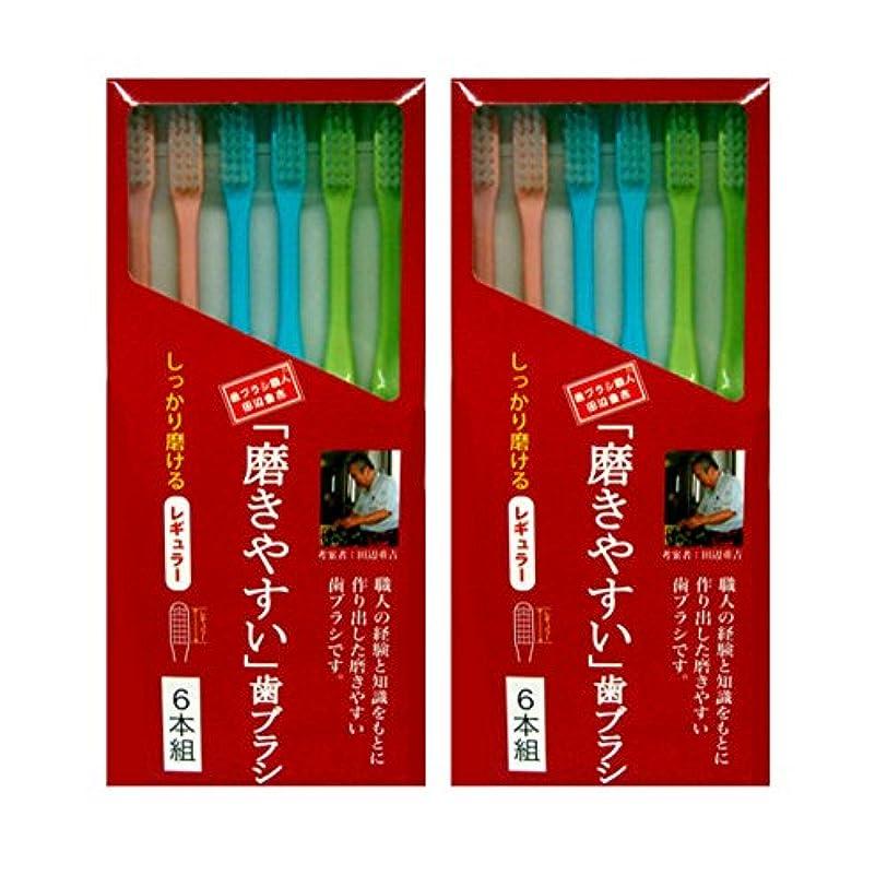 水族館バリケード水平磨きやすい歯ブラシ レギュラータイプ 6本組×2個セット (計12本)