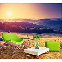 Lixiaoer ファンタジー日没Hd自然風景テレビの背景壁画カスタム3D秋草原リビングルームの装飾壁画-350X250Cm