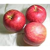 青森産 ジョナゴールド CA貯蔵リンゴ 5kg 中玉18~20個入り