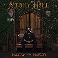 Stony Hill [12 inch Analog]