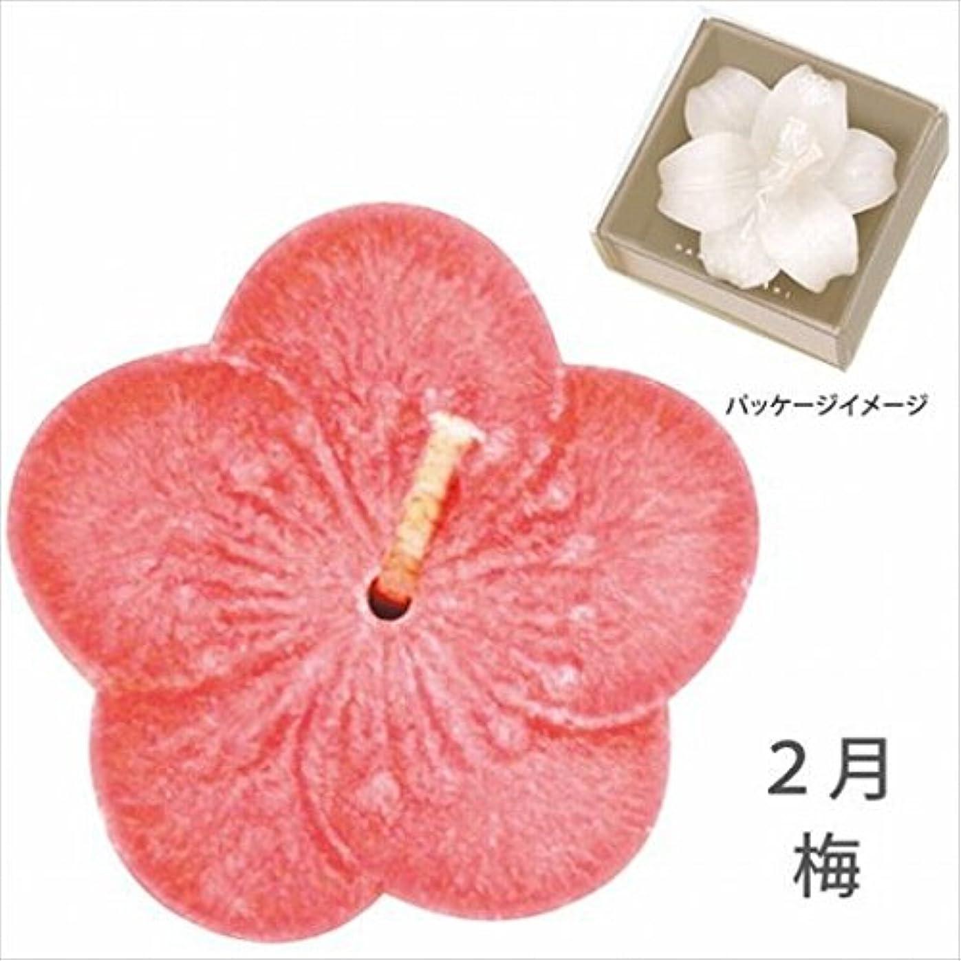 優雅墓地明確なカメヤマキャンドル( kameyama candle ) 花づくし(植物性) 梅 「 梅(2月) 」 キャンドル