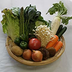 有機・無農薬野菜 10点セット(品目希望可)