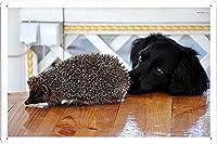 ヘッジホッグラブラドールのティンサイン 金属看板 ポスター / Tin Sign Metal Poster of Hedgehog Labrador