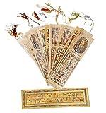 iRSE Office 10枚入り エジプトの本物のパピルス製しおり 古代エジプト文字のシンボル 英語とヒエログリフのアルファベットと絵 クリスマスプレゼントに(エジプト製)