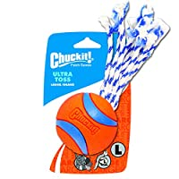 Chuckit Large Ultra Toss for Dogs by Canine Hardware
