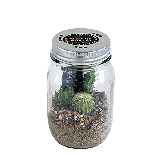 GLASS JAR WITH LED SABOTEN (グラスジャー ウィズ LED サボテン) Sサイズ
