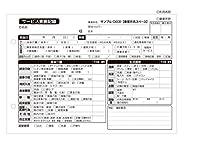 介護記録用紙 サービス実施記録 (303) A5サイズ 2枚複写 50組×50冊【事業所名印刷付き】