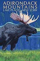The Adirondacks–レークプラシッド、ニューヨーク州–Moose at Night 12 x 18 Art Print LANT-46611-12x18