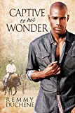 Captive to His Wonder (English Edition)