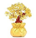 【morningplace】 招財樹 金のなる木 開運 金運 運気 アップ 風水グッズ 玄関 リビング 装飾品 (黄水晶)