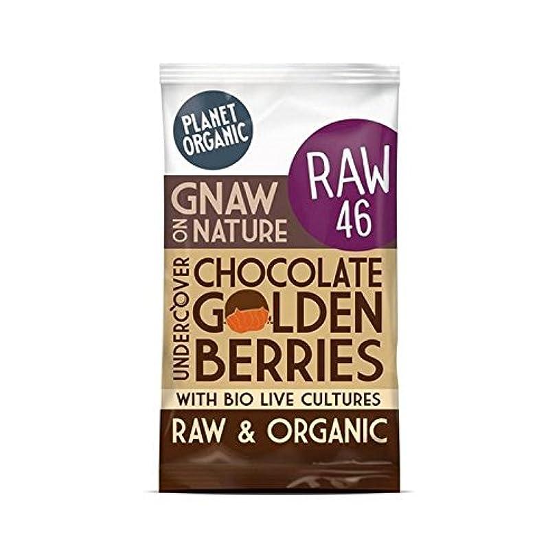 家禽乗り出す教授(Planet Organic (惑星有機)) チョコレート黄金の果実の40グラム (x6) - Planet Organic Chocolate Golden Berries 40g (Pack of 6) [並行輸入品]