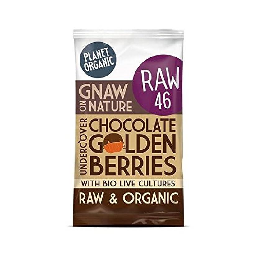 覚醒エレガント素人(Planet Organic (惑星有機)) チョコレート黄金の果実の40グラム (x6) - Planet Organic Chocolate Golden Berries 40g (Pack of 6) [並行輸入品]