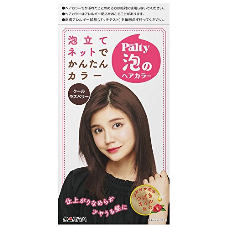 アジア整理する発明パルティ 泡のヘアカラー クールラズベリー