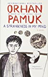 A Strangeness in My Mind (Vintage International)