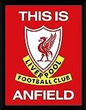 Liverpool リバプール 2014-15モデル TIA アンフィールド フレーム ピクチャー / ポスター 写真