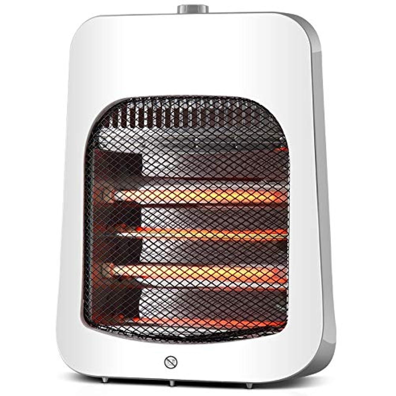 干し草電気技師不健康電気ヒーター小型ヒータースピードホット焙煎ストーブを保存する遠赤外線ヒーター多色オプションの家庭用電気ヒーターのエネルギー (Color : Gray)