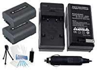 2- Pack np-fh40大容量交換用電池with急速旅行充電器Sonyビデオカメラ選択。UltraProバンドルIncludes :カメラクリーニングキット、スクリーンプロテクター、ミニカメラ旅行三脚