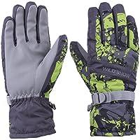 Wild雪冬スキー手袋スノーボードカラフルな防水防風冬用手袋サイクリングスノーボードと作業メンズレディース