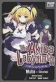 【英語版】 アキバ迷宮~小さな先輩と小旅行~ /The Akiba Labyrinth: A Little Trip with My Little Big (impress QuickBooks) (English Edition)