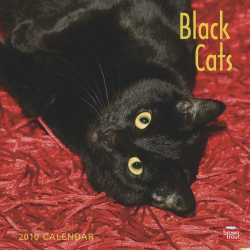 Black Cats 2010 Calendar