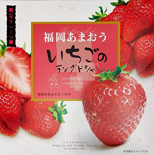 【 大邦物産 】 福岡あまおういちごのラングドシャ/福岡 土産 10個 ×2箱