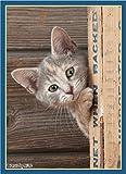 ブロッコリーキャラクタースリーブ 猫 「チラッ」