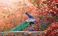 絵画風 壁紙ポスター (はがせるシール式) 紅葉とクジャク 飾り羽 孔雀 芸術の羽 青緑 藍色 鳥 キャラクロ BKJK-009W2 (ワイド版 603mm×376mm) 建築用壁紙+耐候性塗料