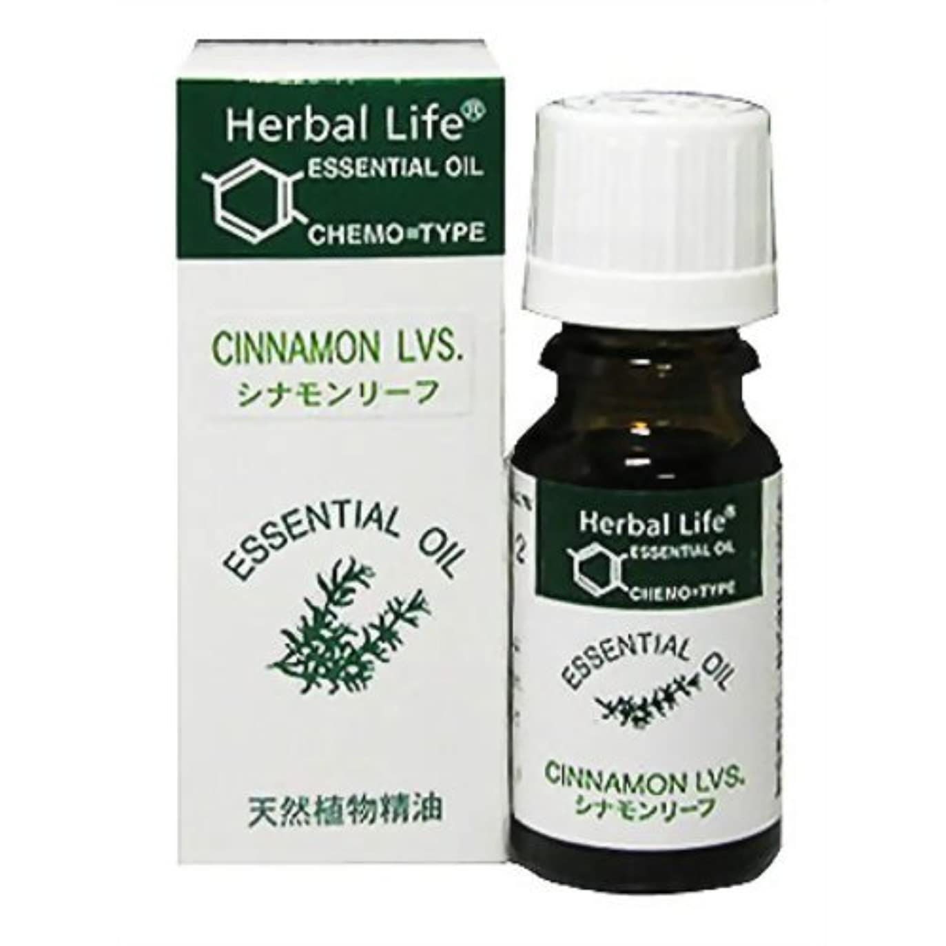 きつくむちゃくちゃ無意味Herbal Life シナモンリーフ 10ml