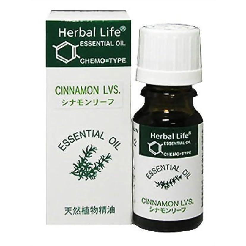 着服輪郭塩Herbal Life シナモンリーフ 10ml