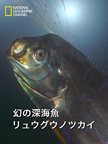 幻の深海魚 リュウグウノツカイ