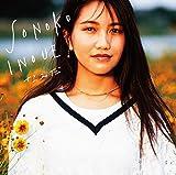 なみだ(初回限定盤)(DVD付)
