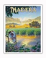 マデラ(サン・ホアキン・バレー)・ワイナリー - セントラルヴァレーAVAブドウ園 - カリフォルニアワインカントリーアート によって作成された カーン・エリクソン - アートポスター - 41cm x 51cm