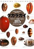 タカラガイ―生きている海の宝石 日本と世界のタカラガイ207種 (ネイチャーウォッチングガイドブック) 画像