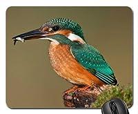 美しいクールな鳥のマウスパッド、青鳥のマウスパッド、マウスパッド