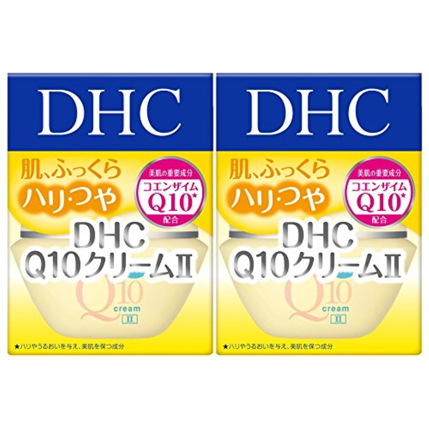 取るに足らない十分定刻【セット品】DHC Q10クリームII (SS) 20g 2個セット